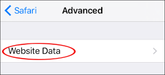 ios website data settings